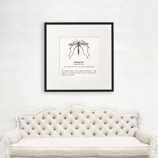 Mosquito Art, Dictionary Print, Mosquito Definition,