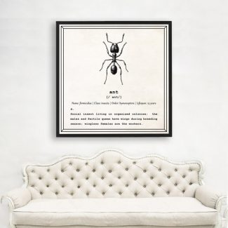 Ant Wall Art, Dictionary Print, An