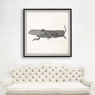 Grasshopper Wall Art, Large Insect Wall