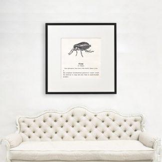 Flea Wall Art, Dictionary Print, Flea