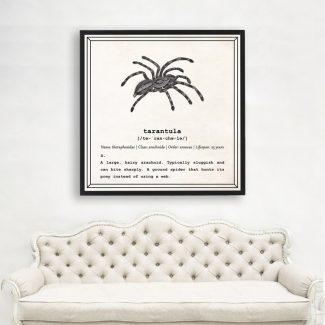 Tarantula Wall Art, Dictionary Print, Tarantula