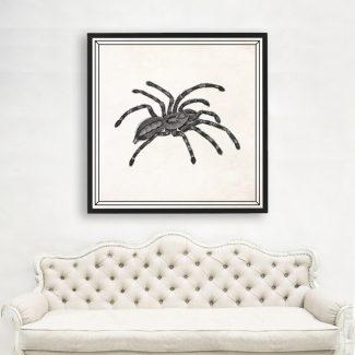 Tarantula Art, Large Insect Wall Art,