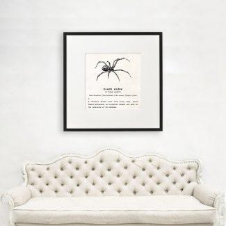 Black Widow Art, Dictionary Print, Black