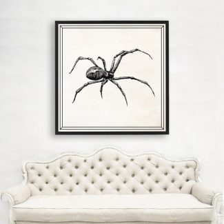Black Widow Art, Large Insect Wall