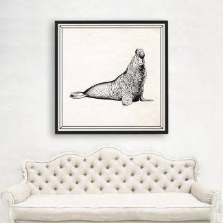 Seals Art, Large Sea Lion Wall
