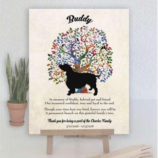 English Springer Spaniel, Family Tree, Dog
