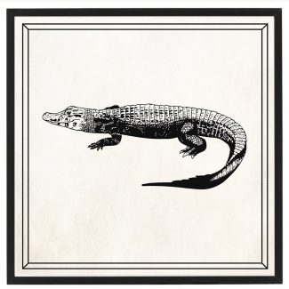 Crocodile Art, Large Crocodile Wall Art,