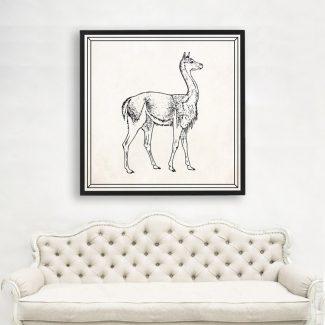 Llama Wall Art Gift, Large Llama