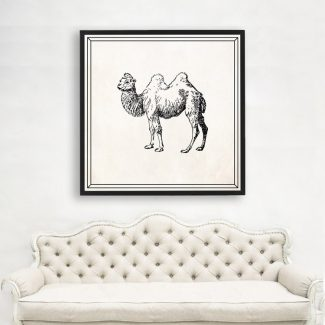 Bactrian Camel Wall Art, Large Animal