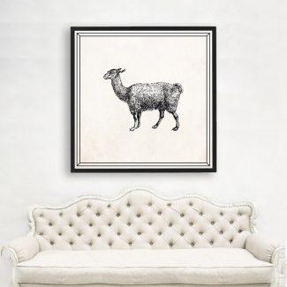 Llama Art, Large Animal Wall Art,