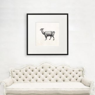 Llama Art, Large Animal Wall Art,
