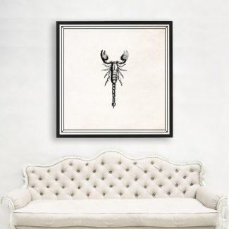 Scorpion Art, Large Scorpion Wall Art,ScientistGift,