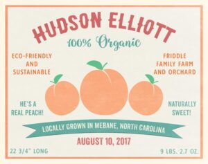 Read more about the article Organic Baby Birth Print Fruit Crate Label Peach – Personalized For Ashley's Family