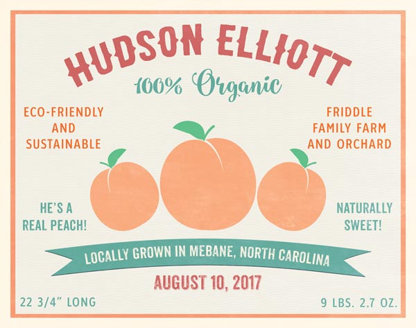 Organic Baby Birth Print Fruit Crate Label Peach – Personalized For Ashley's Family