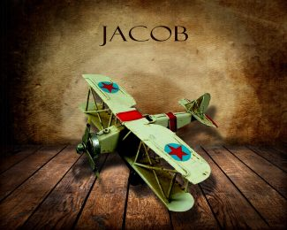 Green Airplane on Wood Table Vintage Background Personalized Aviation Art Print #TCH-1001