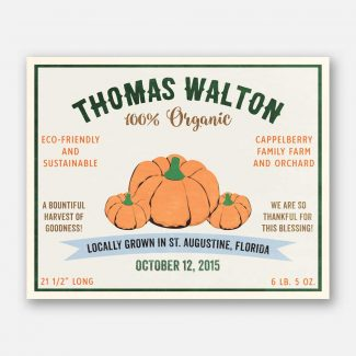 Pumpkin Harvest Thanksgiving Custom Crate Label Style Organic Nursery Layette  #ABP-1013